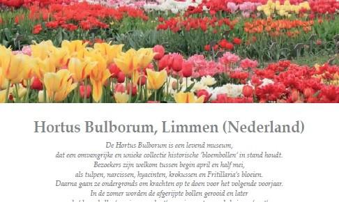 De Tuinen van Eden 53, herfsteditie: Hortus Bulborum
