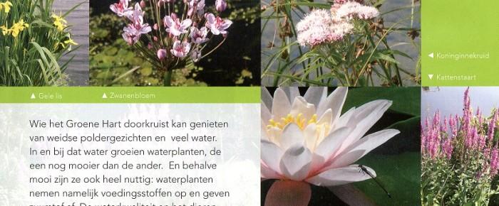 Groene Hart Leven – voorjaar 2013