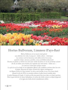Hortus Bulborum - 51 FR