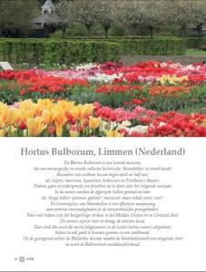 Hortus Bulborum - 53 NL