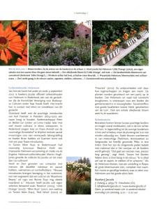 Vasteplantenkwekerij Jacobs 2